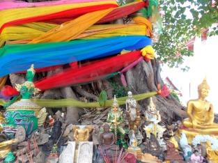 Shire built up around a prayer tree