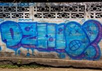 DSCN1408