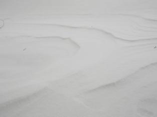 Backyard Snowdrift